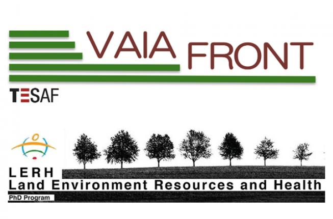 Collegamento a Webinar Progetto Vaia-FRONT e Young Scientists for Vaia